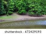 trees reflected in the river... | Shutterstock . vector #672429193