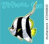 bright tropical sea fish  ...   Shutterstock .eps vector #672440833
