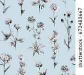 pencil drawings of wild flowers.... | Shutterstock . vector #672483667