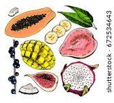vector hand drawn exotic fruits.... | Shutterstock .eps vector #672534643