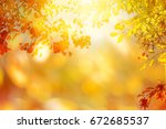 bright autumnal background | Shutterstock . vector #672685537