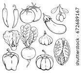 doodle or hand drawn vegetables ... | Shutterstock .eps vector #672689167