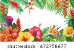 summer banner from tropical and ... | Shutterstock .eps vector #672758677