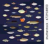freshwater fish set | Shutterstock .eps vector #672918853