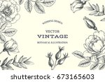 vector background with briar.... | Shutterstock .eps vector #673165603