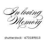 elegant script wedding sign... | Shutterstock .eps vector #673189813