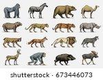 gorilla  moose or eurasian elk  ... | Shutterstock .eps vector #673446073