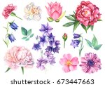 set flowers of bells  lotus ... | Shutterstock . vector #673447663