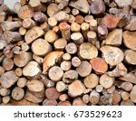 woodpile with firewood | Shutterstock . vector #673529623