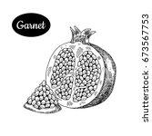 fresh garnet. hand drawn sketch ...   Shutterstock .eps vector #673567753