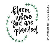 bloom where you are planted | Shutterstock .eps vector #673812157