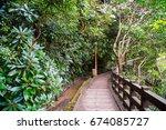a walking trail between trees... | Shutterstock . vector #674085727