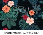 seamless hand drawn tropical... | Shutterstock . vector #674119537