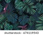 seamless hand drawn botanical... | Shutterstock . vector #674119543