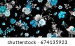 wide seamless background... | Shutterstock .eps vector #674135923