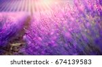 lavender field in provence ... | Shutterstock . vector #674139583