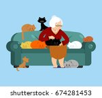 grandmother and cat sitting on... | Shutterstock .eps vector #674281453