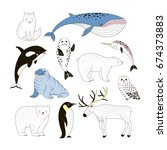 arctic animals clip art... | Shutterstock .eps vector #674373883