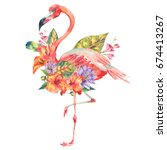 watercolor pink flamingo and... | Shutterstock . vector #674413267