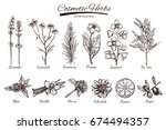 natural cosmetics. vector hand... | Shutterstock .eps vector #674494357