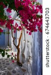 Small photo of July 2017: Picturesque house at chora with bougainvillea flowers at Koufonissi island, Cyclades, Aegean, Greece