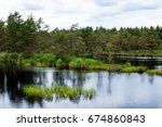 a swamp with water and skies. | Shutterstock . vector #674860843