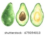hand drawn watercolor avocado ... | Shutterstock . vector #675054013