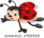 cartoon ladybug flying | Shutterstock .eps vector #675095203