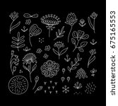 hand drawn floral elements set. ... | Shutterstock .eps vector #675165553