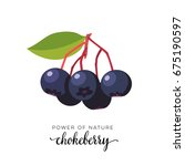 blue chokeberry berry flat icon ... | Shutterstock .eps vector #675190597