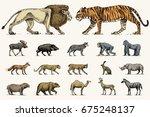 gorilla  moose or eurasian elk  ... | Shutterstock .eps vector #675248137