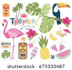 tropical vector collection. | Shutterstock .eps vector #675333487
