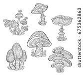 set of stylized ornamental... | Shutterstock .eps vector #675362863