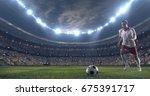 soccer player kicks the ball... | Shutterstock . vector #675391717