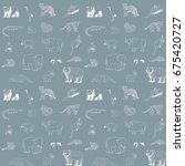 asian animals doodle graphic... | Shutterstock .eps vector #675420727