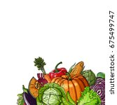 colored vegetables.  fresh food.... | Shutterstock .eps vector #675499747