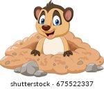Cartoon Meerkat In A Hole