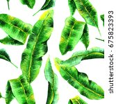 tropical hawaii leaves palm... | Shutterstock . vector #675823393