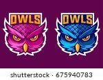 purple and blue owl head mascot ... | Shutterstock .eps vector #675940783