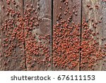 A Thousand Red Bugs  Popularly...