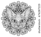 monochrome ink drawing.... | Shutterstock . vector #676287223