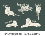 silhouette wild cats collection ...