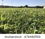 green grass | Shutterstock . vector #676460503