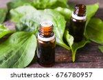 essential oil of plantain | Shutterstock . vector #676780957