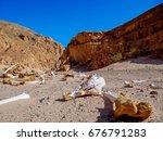 Bones Of A Camel In The Desert
