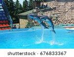 adler  sochi   russia   june 11.... | Shutterstock . vector #676833367