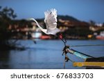 great egret starting the flight ... | Shutterstock . vector #676833703