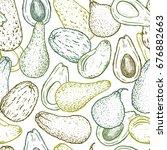 avocado varieties vector