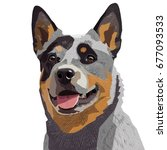 australian cattle dog isolated | Shutterstock .eps vector #677093533