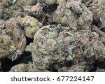 macro ounce of marijuana... | Shutterstock . vector #677224147